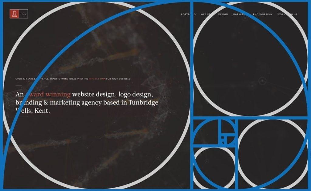 نسبت طلایی در طراحی وبسایت